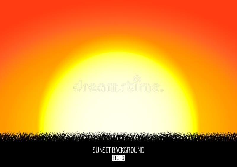 Fondo de la puesta del sol o de la salida del sol con la silueta negra de la hierba Sistemas ardientes del sol sobre el horizonte ilustración del vector