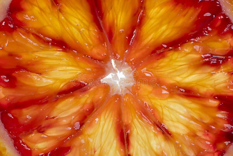Fondo de la pulpa de la naranja de sangre foto de archivo