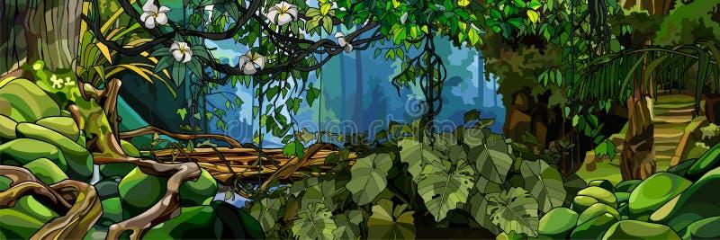 Fondo de la selva con las plantas tropicales y los árboles enormes libre illustration