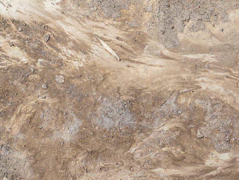 Fondo de la textura de la capa del suelo de la turba foto de archivo libre de regalías