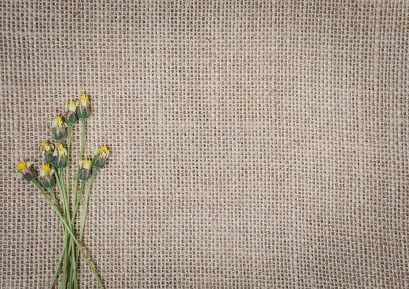Fondo de la textura de la arpillera foto de archivo