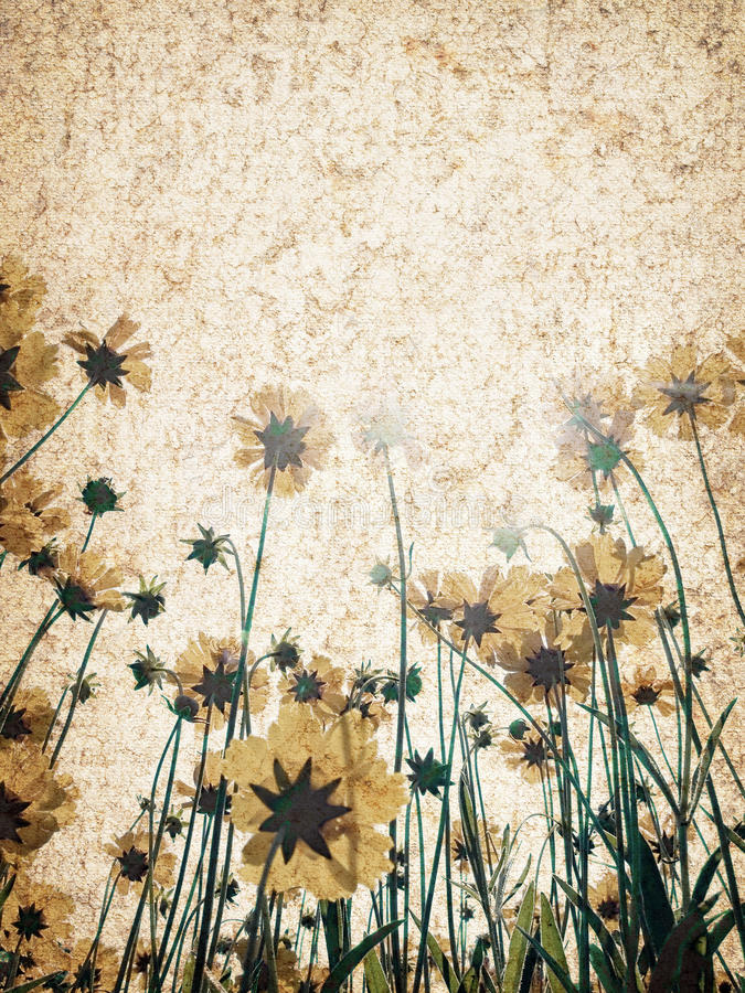 Fondo de la textura de la flor. ilustración del vector