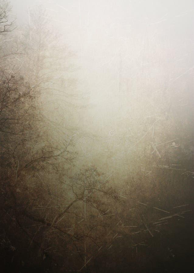 Fondo de la textura del bosque de la vendimia imagen de archivo libre de regalías