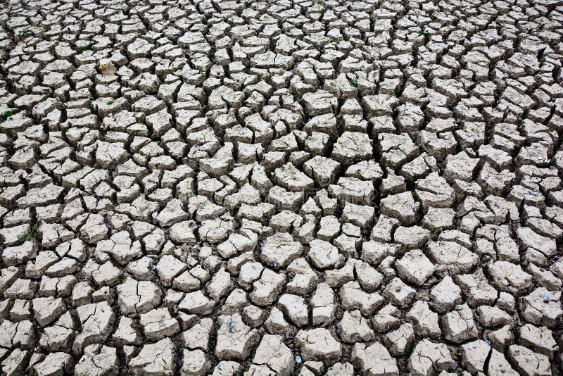 Fondo de la textura del groud de la tierra de la sequía foto de archivo libre de regalías