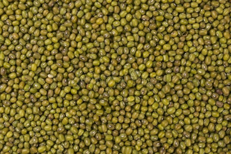 Fondo de la textura de la haba de Mung o de la lana de borra Nutrición bio Ingrediente alimentario natural imagen de archivo libre de regalías