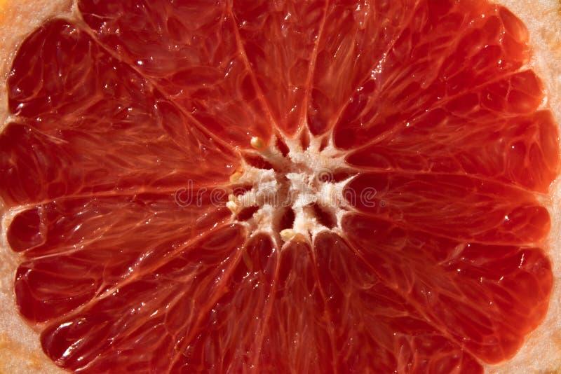 Fondo de la textura madura del pomelo imagen de archivo libre de regalías