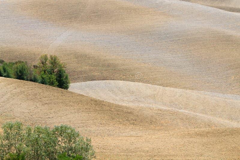 Fondo de las curvas Paisaje del verano de las colinas de Toscana imagen de archivo libre de regalías