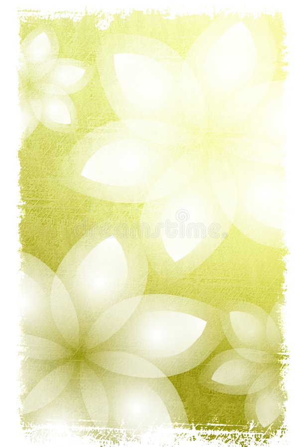 Fondo de las flores blancas stock de ilustración