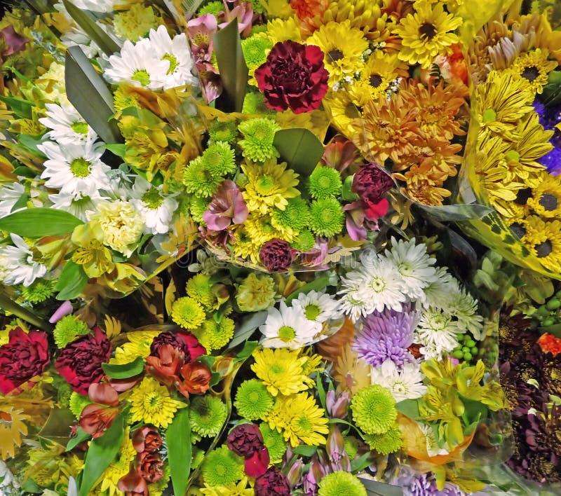 Fondo de las flores de corte fotos de archivo
