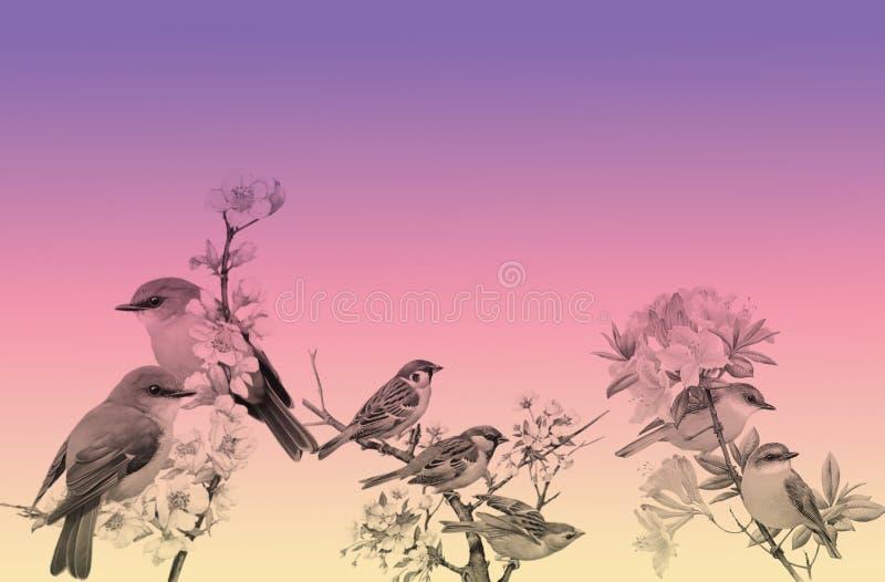 Fondo de las flores y de los pájaros foto de archivo