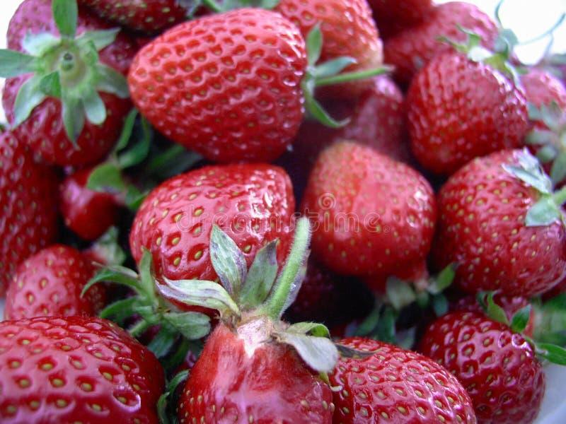 Fondo de las fresas