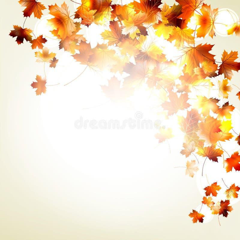 Fondo de las hojas de otoño del arce. EPS 10 stock de ilustración