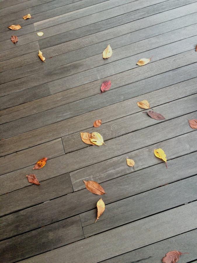 Fondo de las hojas de otoño en el piso oscuro de los tableros imagenes de archivo