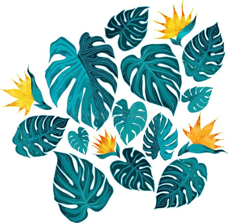 Fondo de las hojas tropicales verdes con las flores amarillas foto de archivo