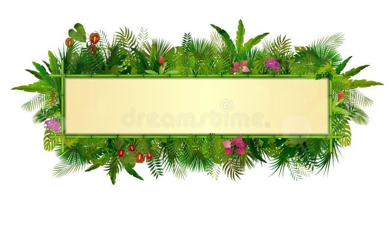 Fondo de las plantas tropicales marco floral del rectángulo con el espacio para el texto en bambú del concepto ilustración del vector