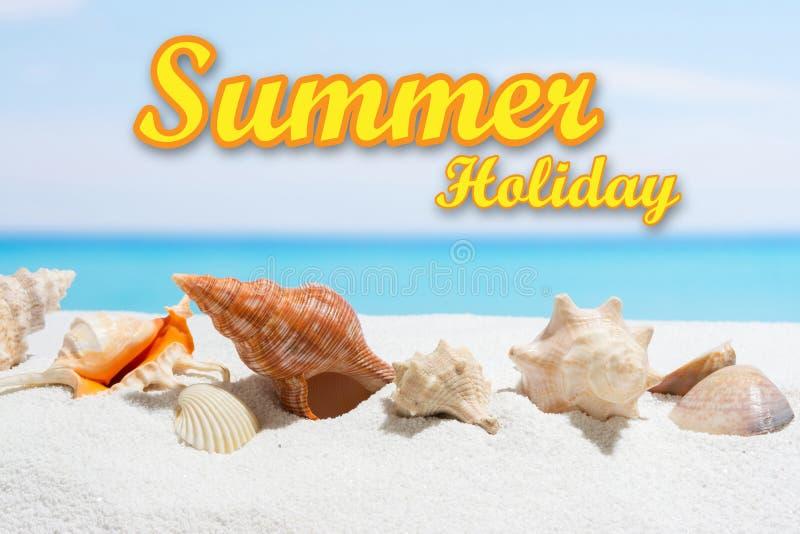 Fondo de las vacaciones de verano con el texto Concha marina en la playa fotos de archivo libres de regalías