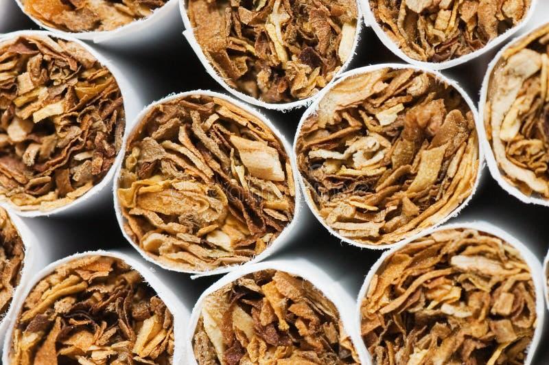 Fondo de los cigarrillos fotos de archivo libres de regalías
