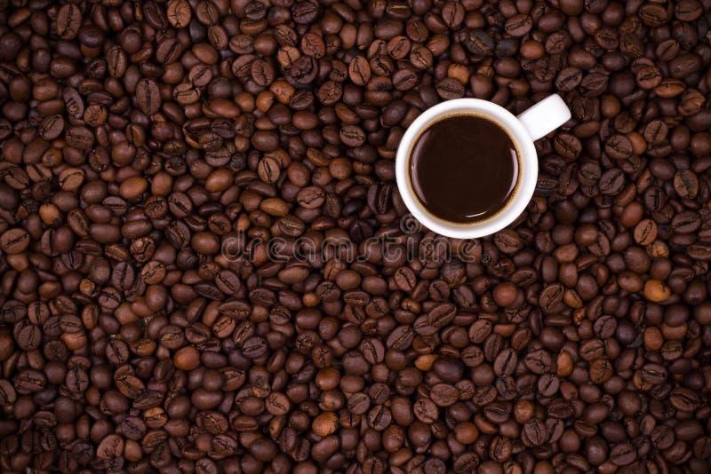 Fondo de los granos de café con la taza blanca fotografía de archivo