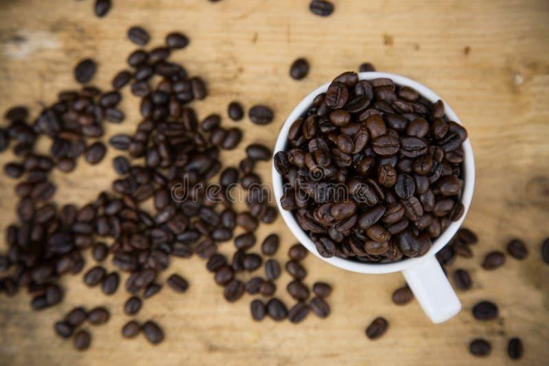 Fondo de los granos de café en los granos de café de madera, frescos con la taza de café en el fondo de madera, fondo determinado imagen de archivo libre de regalías