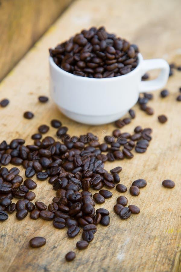 Fondo de los granos de café en los granos de café de madera, frescos con la taza de café en el fondo de madera, fondo determinado fotografía de archivo
