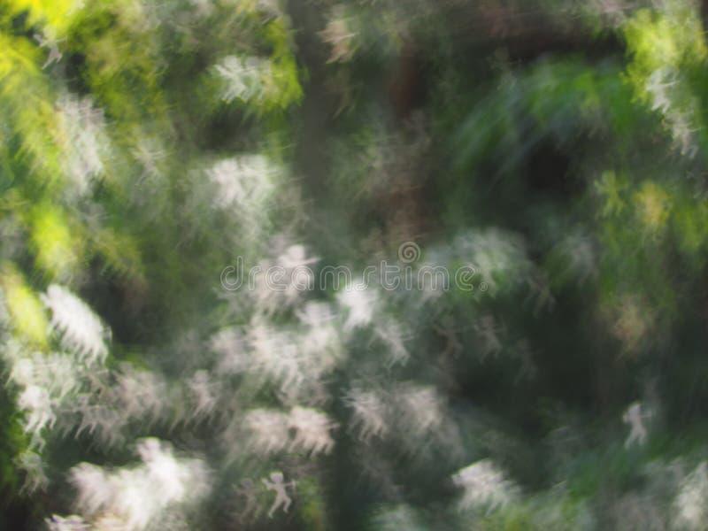 Fondo de lujo del bokeh de las luces abstractas fotos de archivo