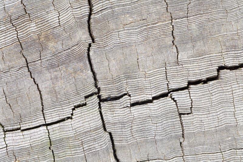 Download Fondo de madera foto de archivo. Imagen de decoración - 41905542