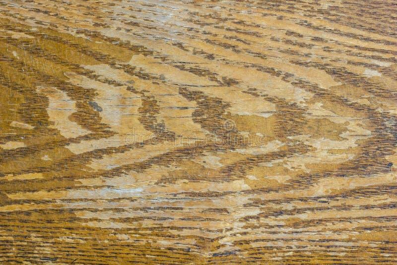 Fondo de madera beige de Brown del viejo de las ondas de la textura del panel tablero de madera del vintage foto de archivo