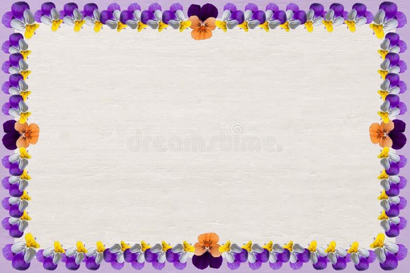 Fondo de madera con el marco de las violas imagen de archivo