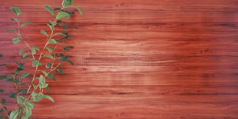 Fondo de madera con un ejemplo de la planta 3D stock de ilustración