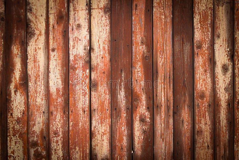Fondo de madera de la textura con el modelo natural imagen de archivo