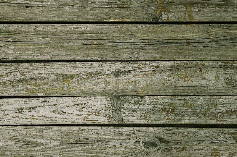 Fondo de madera de la textura con el modelo natural, color verde oscuro imagen de archivo libre de regalías
