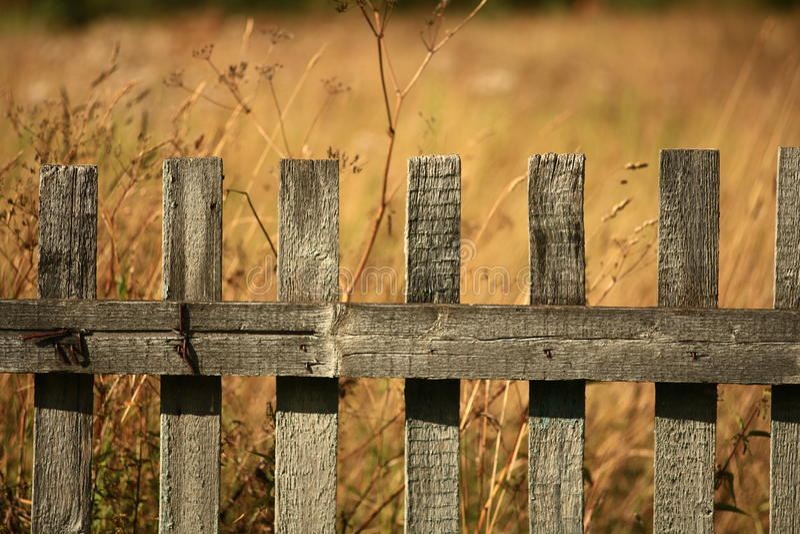 Fondo de madera de la textura de madera natural oscura fotografía de archivo