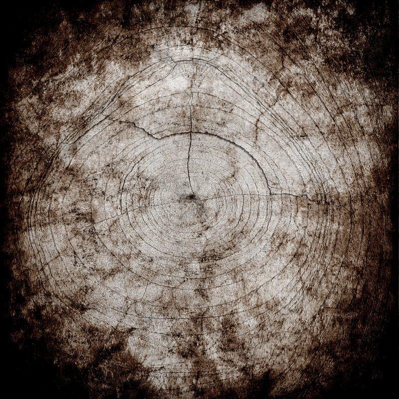 Fondo de madera de la textura del Grunge de los anillos ilustración del vector