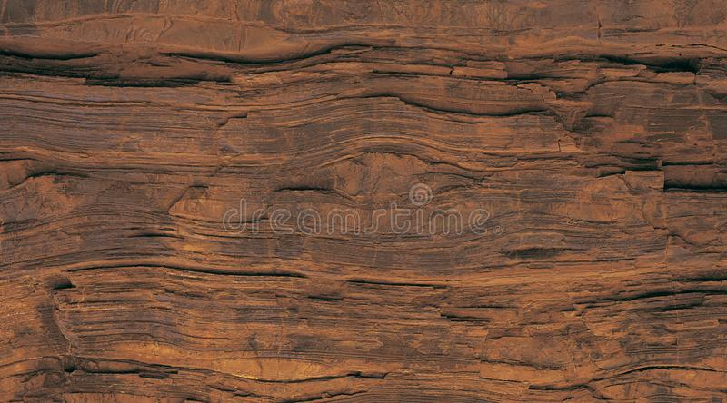 Fondo de madera del árbol con textura del vintage imágenes de archivo libres de regalías