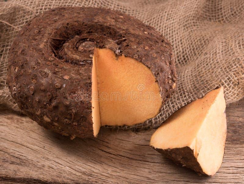 Fondo de madera del ñame del pie del elefante imagenes de archivo
