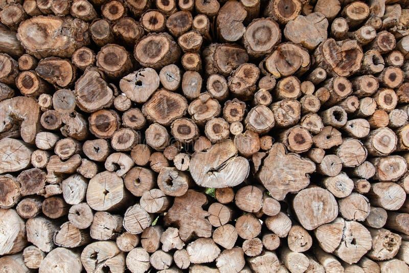 Fondo de madera del tocón de la teca redonda imagen de archivo libre de regalías