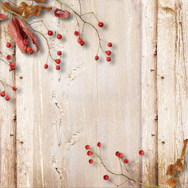 Fondo de madera del vintage con el serbal y las hojas del otoño fotos de archivo libres de regalías