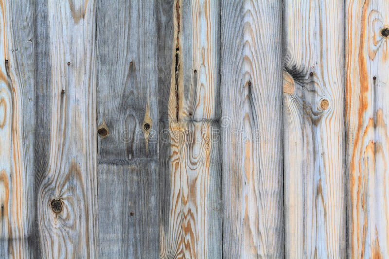 Fondo de madera gris de la textura fotografía de archivo