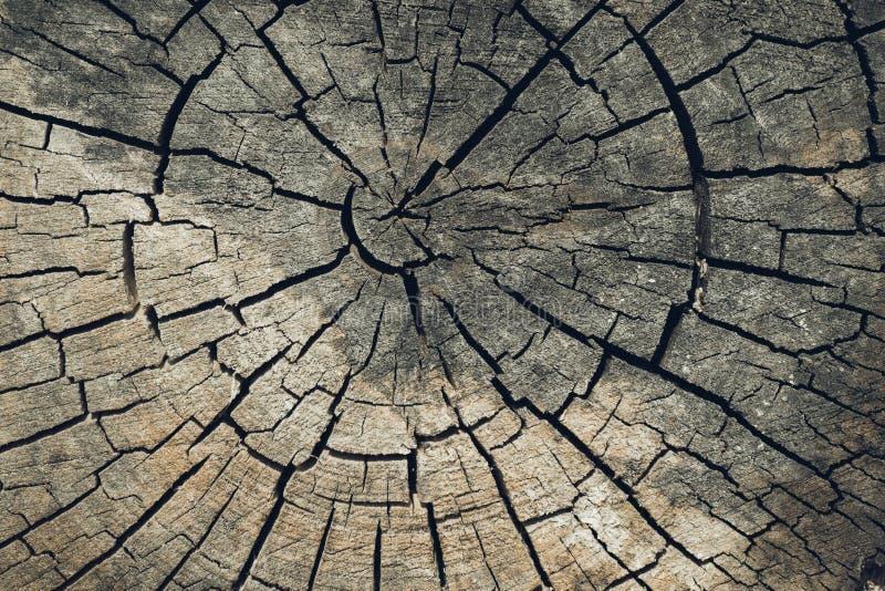 Fondo de madera de la textura o de madera Vieja textura cortada de madera marrón Primer oscuro del fondo del Grunge Textura detal imagen de archivo libre de regalías
