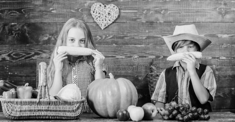 Fondo de madera de las verduras de las mazorcas de ma?z del juego de ni?os D?a de fiesta del festival de la escuela Idea del fest imagenes de archivo