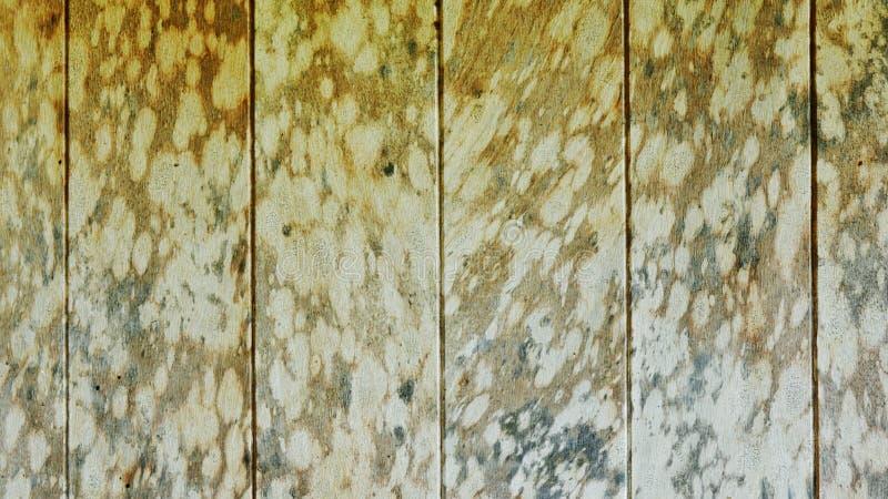 Fondo de madera de los paneles del viejo vintage fotografía de archivo libre de regalías