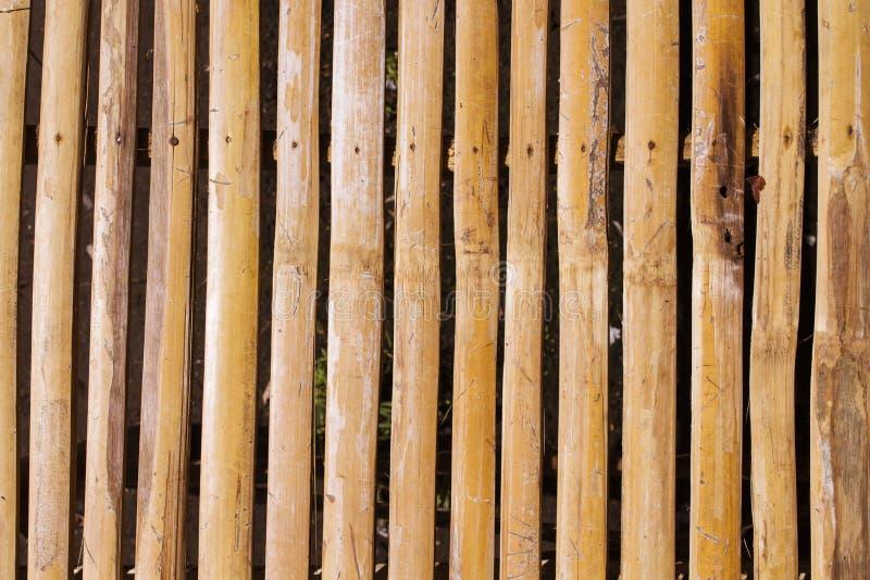 Fondo de madera marrón caliente de la foto de la tabla de la planta Opinión de sobremesa de madera del tablón fotografía de archivo libre de regalías