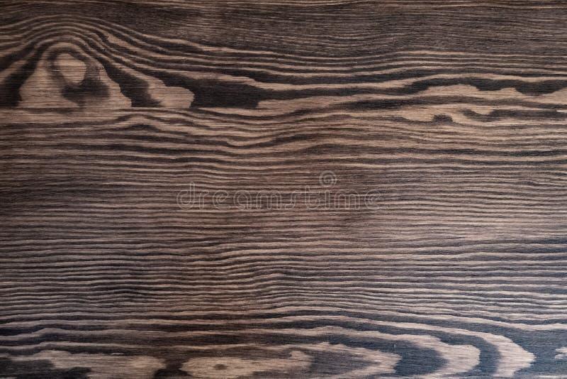 Fondo de madera marrón natural vacío Fondo creativo del árbol Textura brillante del contraste foto de archivo libre de regalías
