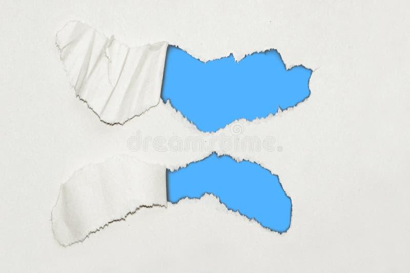 Fondo de papel textured rasgado