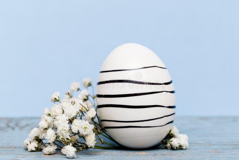 Fondo de Pascua con un huevo y flores blancas en el papel azul foto de archivo