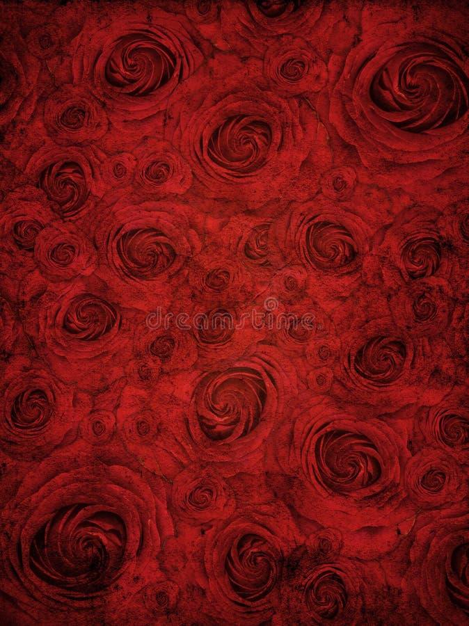 Fondo de Rose ilustración del vector