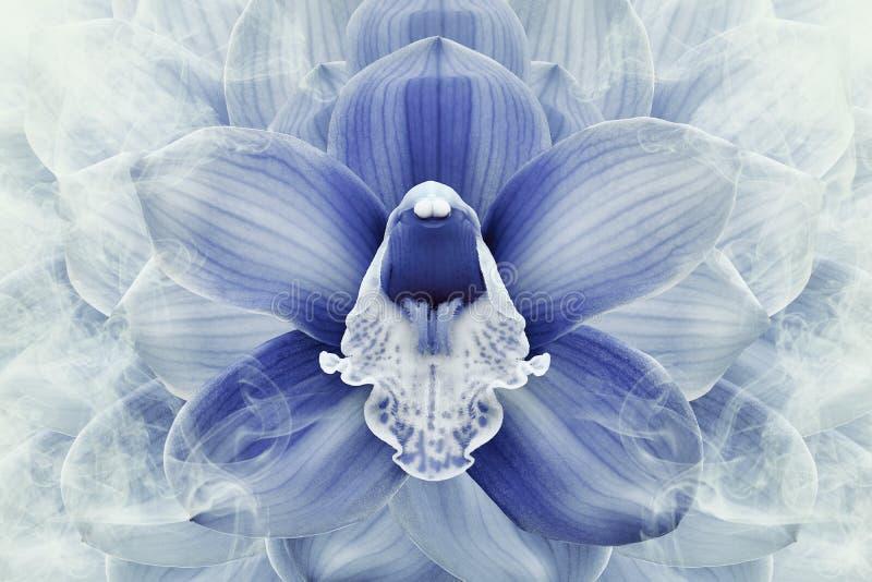 Fondo de semitono floral del azul y blanco Flor y p?talos de un cierre de la orqu?dea azul para arriba libre illustration
