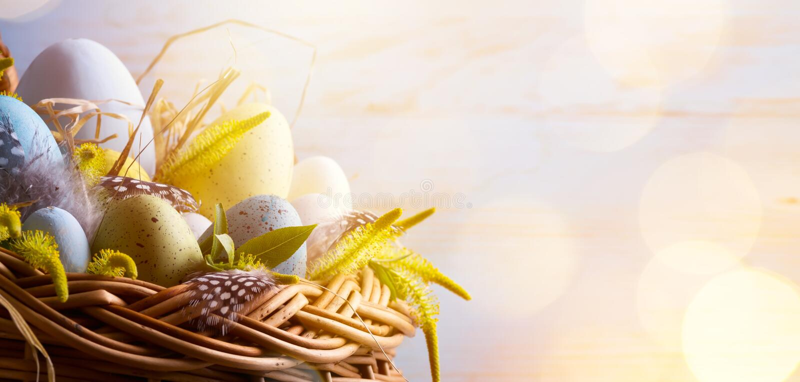 Fondo de Sunny Easter con los huevos de Pascua en la cesta foto de archivo libre de regalías