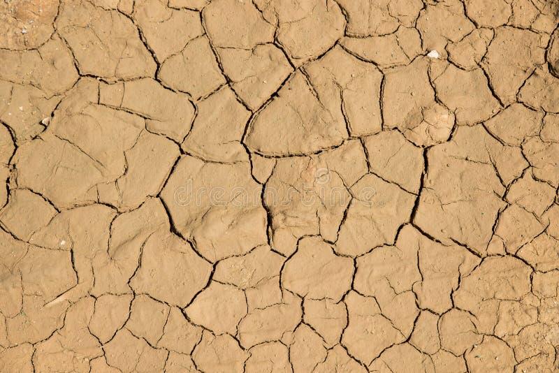 Fondo de tierra secado de la textura del suelo agrietado de la tierra imagenes de archivo