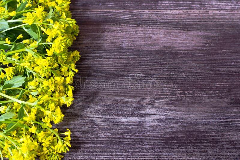 Fondo de Wodden con el marco para de los wildflowers frescos amarillos fotos de archivo